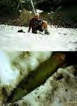 Unexploded avy bomb
